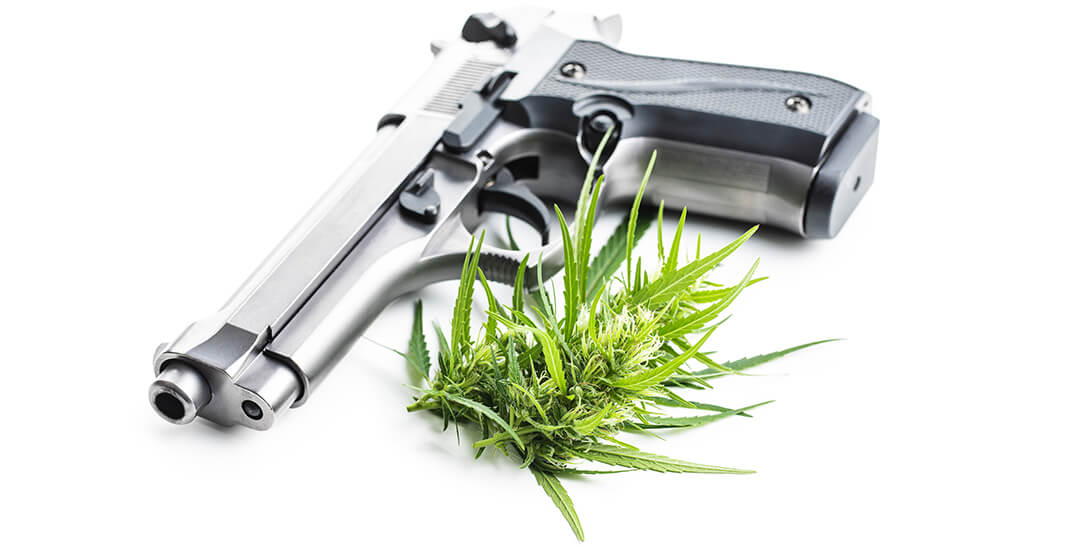 Medical Marijuana and Florida Concealed Weapon License